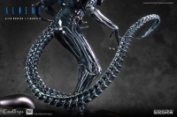 ALIENS - Alien Warrior DELUXE 1/3 Statue 74 cm Coolprops